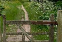 gates/fences