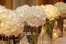 Wedding / by Sarah Peck