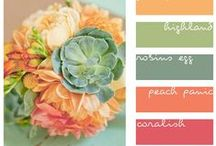 Inspirational Color Schemes / Coordinating colors schemes
