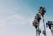 (MDR) Loves LA / All things Los Angeles!