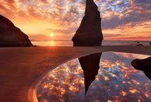 Oregon / by Lynn Leone