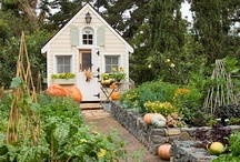 Home - Tiny Houses & Spaces / by Lisa Lane