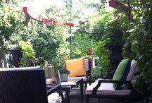 Backyard wish list