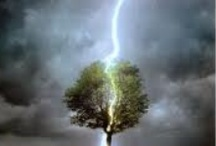 Lightning / I love the lightning pictures.They are amazing and beautiful and a joy to see how they evolve.