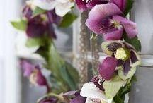 Wedding Ideas / by Kelley Morton