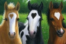 ♥ Horses ♥ / by Janice Conway