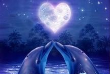 ♥ Dolphins ♥ / by Janice Conway