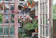 GREEN HOUSE/POTTING SHED  / When I grow up I'm gonna do this