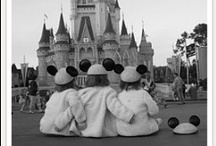disney magic  / by Emily C