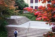 University of Victoria: Our Neighbour up the Hill / With over 20,000 students and a quarter of that in staff, UVic makes up a big part of our community! Check out these pins for  people, places and happenings at UVic and the surrounding area of Cadboro Bay Village