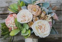 Bouquet Blooms / by Angelina Scianna