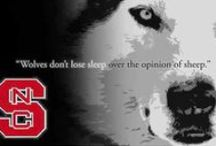 Wolfpack Lovin! / by Taylor Hartley