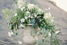 Wedding Floral Inspiration / by Caitlin Kruse