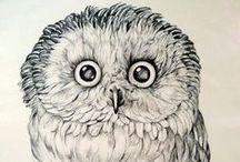owly / by Marloes Tobé