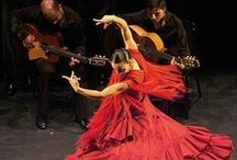 Flamenco / by ninia sal