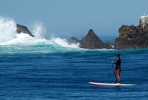 SUP dude! / Stand Up Paddle (SUP) Boarding is totally out thing! A great workout and an exhilarating paddle experience!