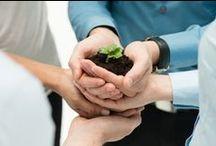 Medio Ambiente y Sustentabilidad 2016 / Salvaguardar el medio ambiente... Es un principio rector de todo nuestro trabajo en el apoyo del desarrollo sostenible; es un componente esencial en la erradicación de la pobreza y uno de los cimientos de la paz. Kofi Annan / by Expok Sustentabilidad y RSE