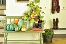 It's Fall!! (Recipes and Decor) / All thing autumn....food, decor and more! / by Lydia @ Thrifty Frugal Mom