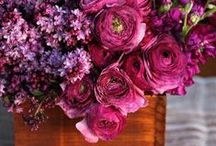 DECORATION // FLOWERS / Blumen in voller Pracht und allen Farben und Ausführungen! Hier lässt Tastesheriff Euch teilhaben an ihren Entdeckungen im Netz. // Flowers, beautifully arranged in every colour you can think of! Here you have the chance to have a look at the Tastesheriffs discovery.