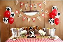 Birthday: Rodeo/Horse/Western / Inspiration board for a rodeo/horse/western themed kids birthday party.