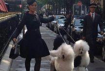 ::Parisian Chic:: / Au Paris classic style  / by Idalia Barlow