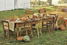 Thanksgiving / by Patricia Rutland