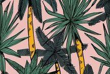 patterns / by Sarah McGivney