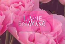 La Vie En Rose / by gorjana