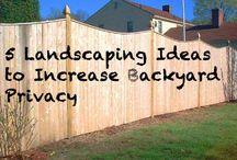 Backyard Landscaping / by Sheelagh Neuwirth