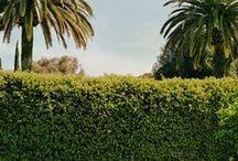 G A R D E N I A / //lawn and garden// / by Lyndsey Grundman