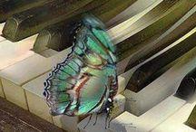 Beautiful Wings / by Denise Red Flower Fanatic