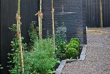 Landscaping / by Anabel Manchester Lopez