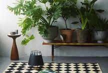 Home Decor / by Ana Mattera
