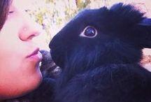 Bunny Love / For my little bunny, Hoppy McJumperson <3
