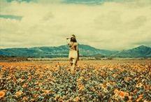 Summertime / by Caitlin Cassidy