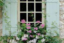 window boxes / by Sharon Lambert