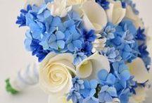 Wedding Bouquets / by Erin Krushelniski