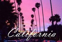 California Dreamin' / by Bare Necessities