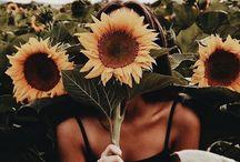 •Spring•
