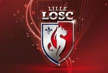 LOSC Lille Olympic Sporting Club / Le tableau du LOSC : équipe, supporters, stade