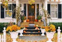 curb appeal / by Melissa Medlin