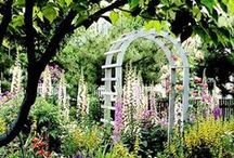 The Orchard: Cottage Garden Inspiration: Shabby Chic Vintage / Beautiful Cottage Gardens to inspire your garden hideaway