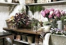 The Orchard: Potting Sheds: Shabby Chic Vintage / Functional and stylish, design your perfect potting shed with our inspirational board.
