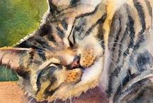 Animalia: Cat 2... / by Esperanza Wild