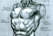 CG anatomy & tutorials for artists / references, anatomy, step by steps, how to, lessons, techniques...please contact me to  BE ADDED TO PIN ON THIS group BOARD