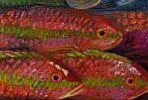 Animalia: Fish... / by Esperanza Wild