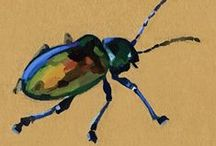 Animalia: Bug... / by Esperanza Wild