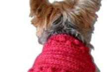 Doggy Sweaters / by Ginnie Cummo