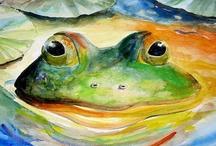 Animalia: Frog... / by Esperanza Wild