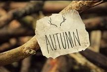 FALLing in love with Autumn / Leaves changing colors/falling from the trees, cooler weather, hunting, football games, birds flying south, Thanksgiving & Black Friday......  ~Sept 22- Dec 20~ / by Christina Moser